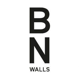 BN (Нидерланды)